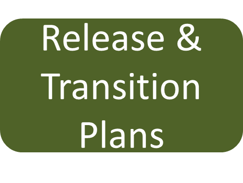 Text reading Release and Transition plans