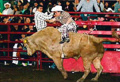 Jaripeo Ranchero Bull Riding Rodeo