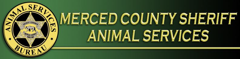 Animal Services Header copy