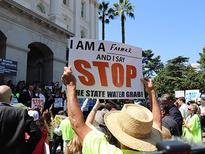 Protesters with Signs at California State Water Grab Protest