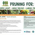 01-26-2019 PruningWorkshop