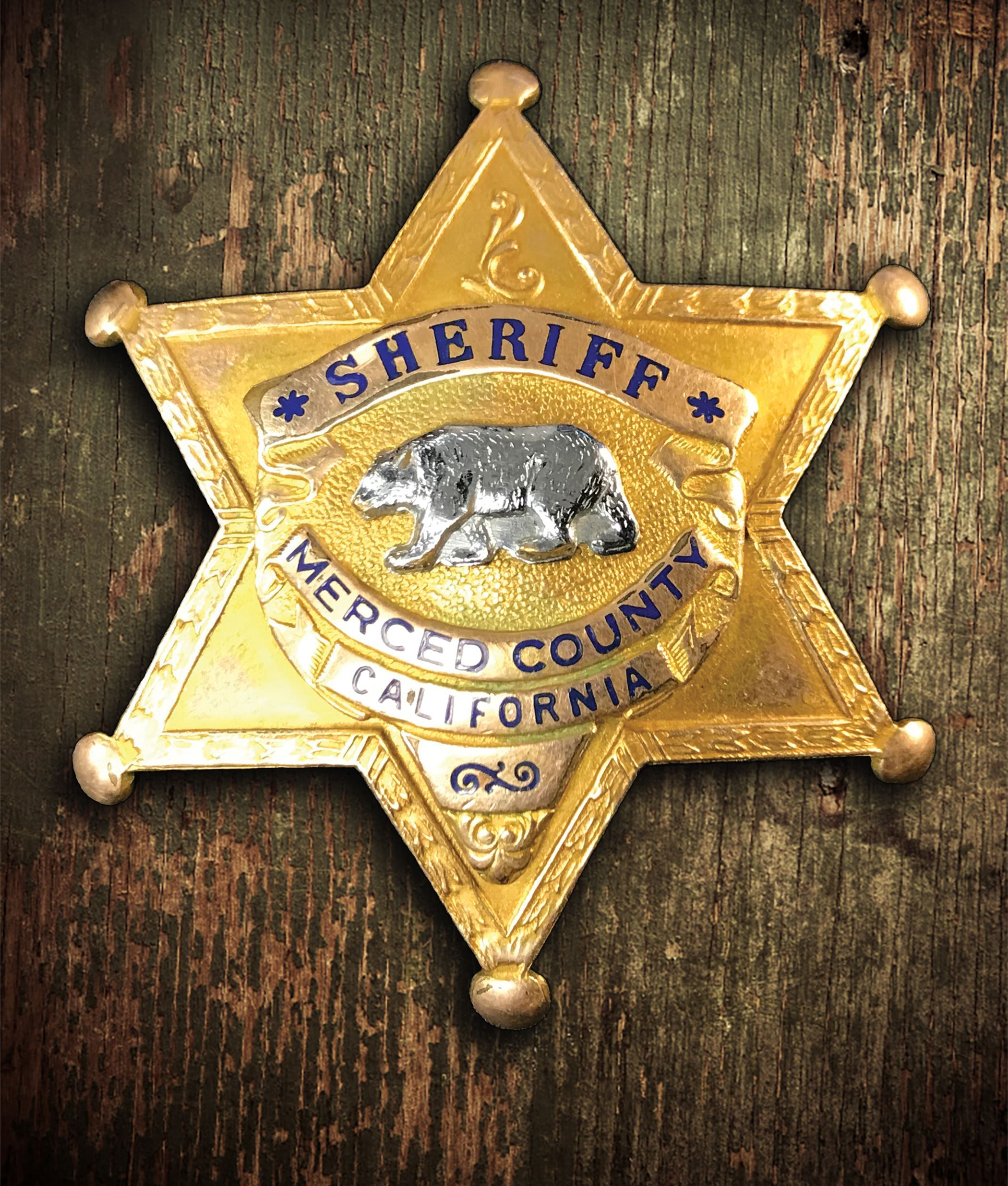 Sheriff Badge 1