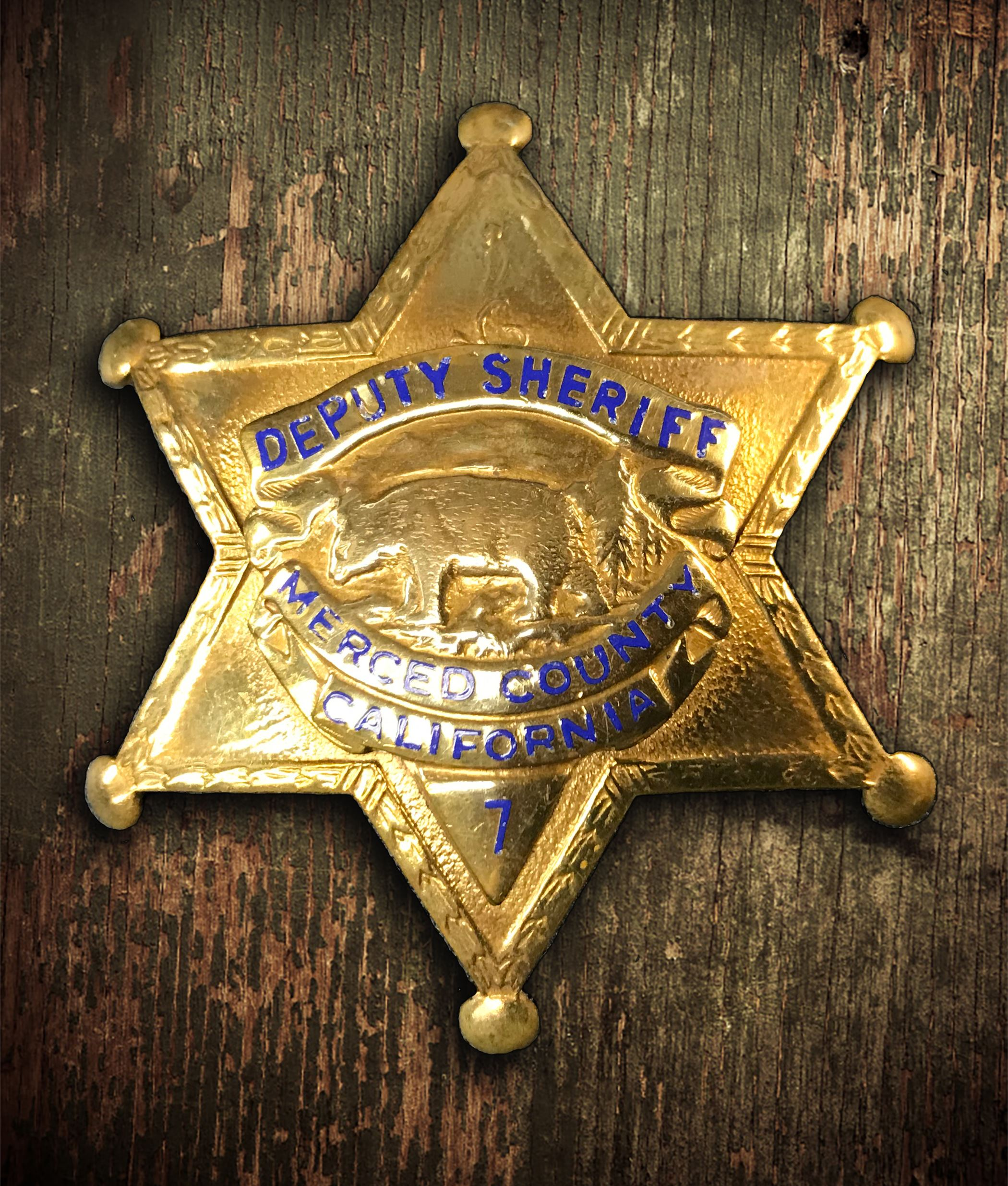 Sheriff Badge 3