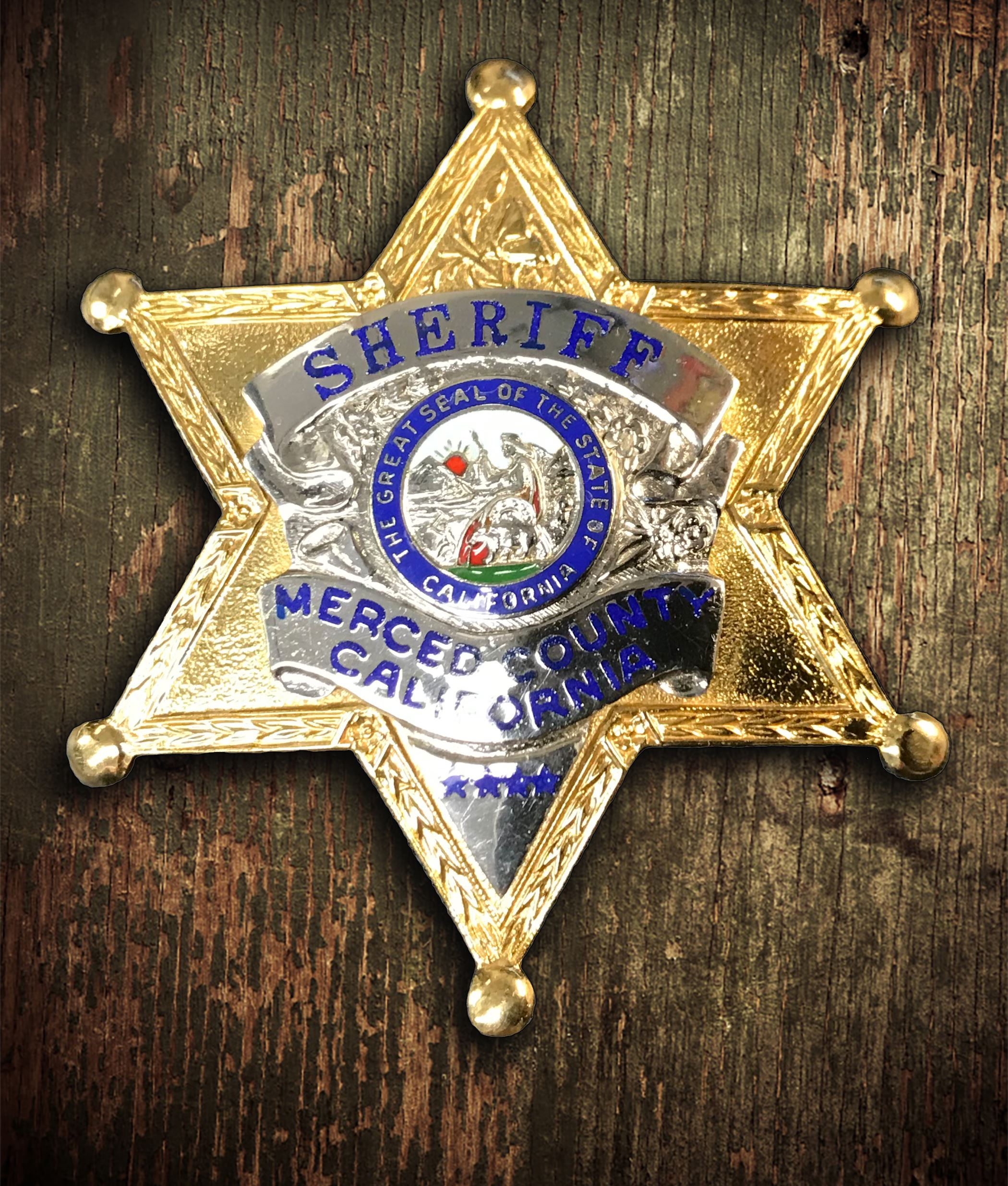 Sheriff Badge 4